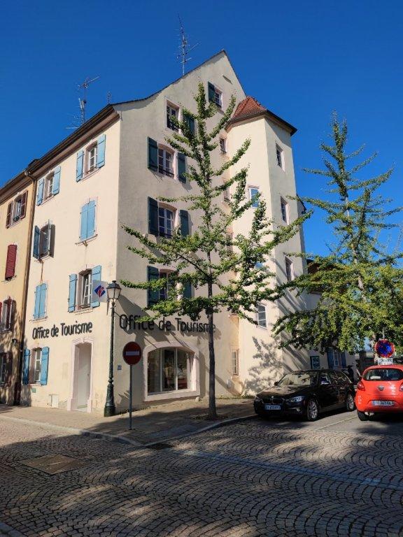 Immeuble de rapport A VENDRE - ALTKIRCH - 650 m2 - 640000 €